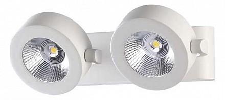 LED потолочный спот Pumavi OD_3493_20WL