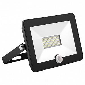 Настенный прожектор SFL80-20 29522