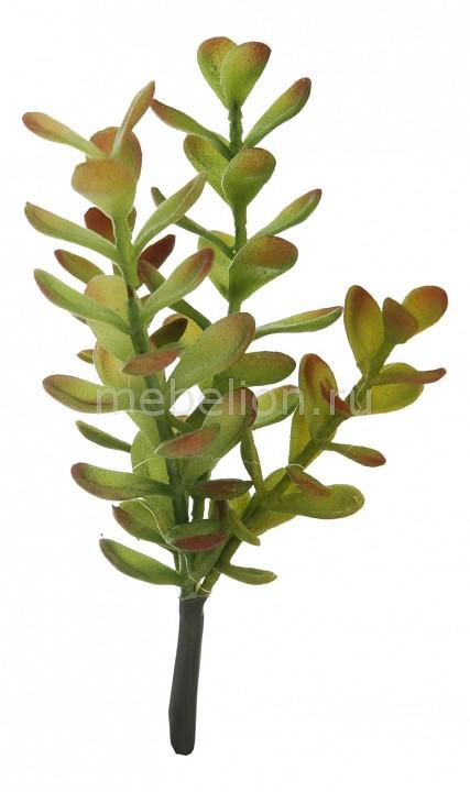 Ветка Home-Religion (21 см) Денежное дерево 58007900 карликовое дерево flower 5 cucurbita b032