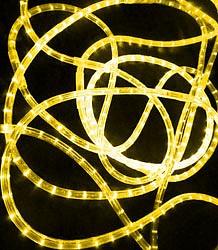 Шнур световой RL-DL-3W-100-240-Y