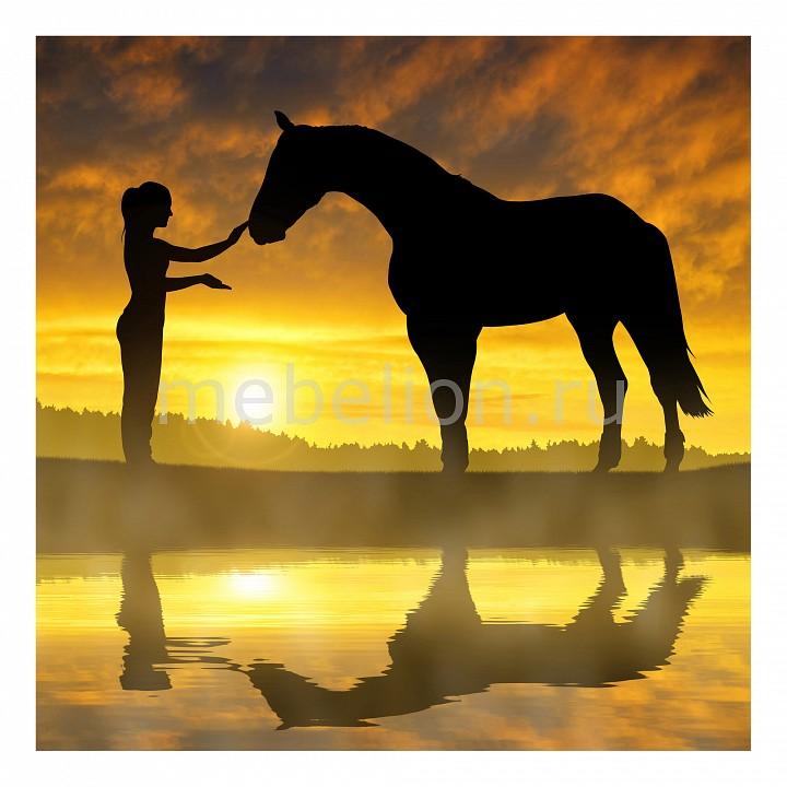 Панно Ekoramka (50х50 см) Девушка и лошадь 134691804